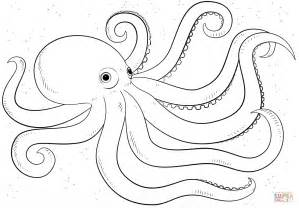 octopus coloring page coloring pages of octopus for preschoolers coloring home