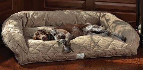 deep dish dog bed 65 best images about ideas on pinterest retirement cards