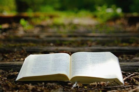 photo travel gods words wood bible   nature