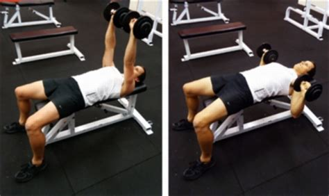 bench press injuries chest free weights chest shoulders triceps physioadvisor