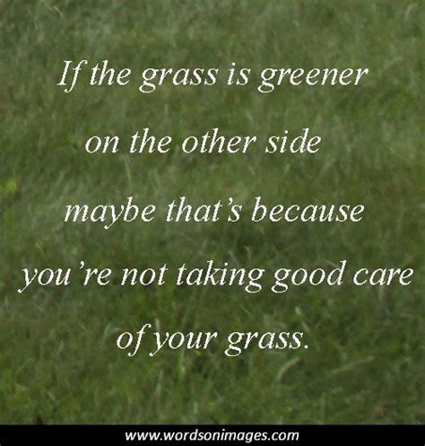 lawn care quotes lawn service quotes quotesgram