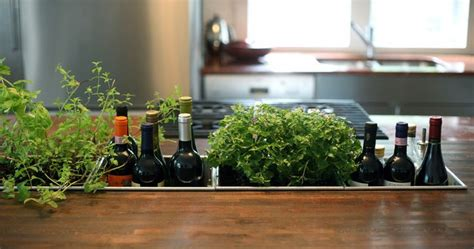 kitchen herb garden ideas 15 phenomenal indoor herb gardens