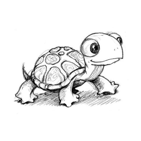 cartoon turtle tattoo designs best 25 turtle ideas on turtle