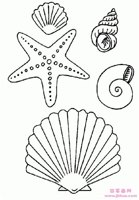 seashell coloring pages preschool 海星贝壳海螺简笔画大全 简笔画网