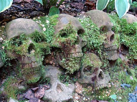 Skull Garden 17 best images about skull garden on gardens