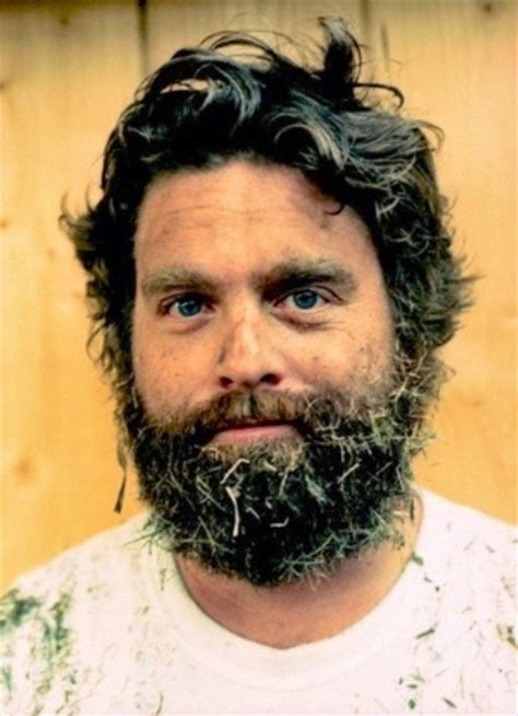 hangover actor with beard 48 best zach galifianakis images on pinterest zach