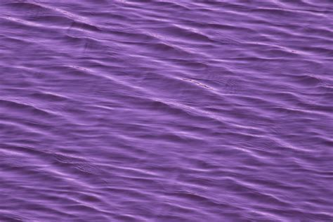 Purple Water Surface Free Stock Photo Domain Pictures