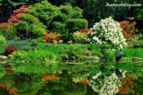 beautiful flower gardens photos garden picturess