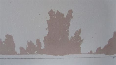 Stripped Wallpaper Flaky Paint removing flaking paint from plaster walls