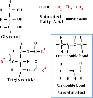 milk lipids chemical properties | food science