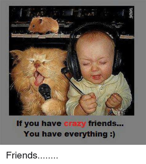if you have crazy friends you have everything friends