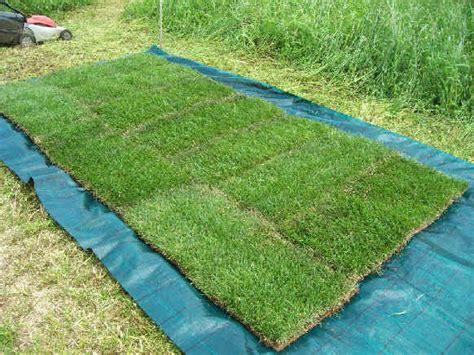 tappeto erba vera 5 rotoli di prato erboso erba vera venduta a rotoli 45