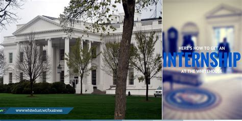internships at the white house learn how to get an internship at the white house whitedust