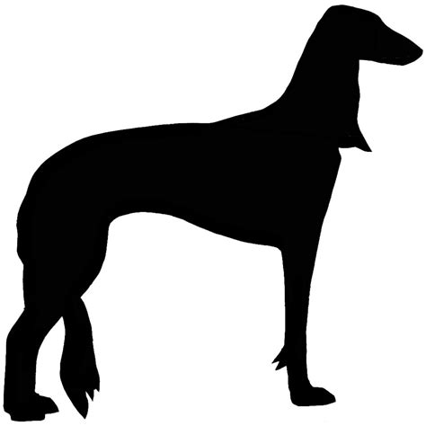 prancing pug norwich terrier schipperke