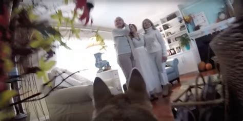film it yourself wedding video couple let their dog film their snowy wedding day and the
