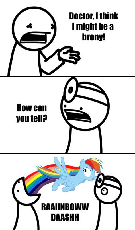 Know Your Meme Brony - 1000 images about pegasister on pinterest rainbow dash