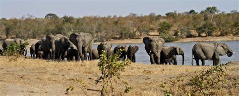 boat finder south africa kruger national park find kruger animal park limpopo