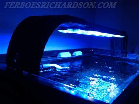 Lu Led Aquarium Laut inspirasi aquarium laut ukuran sedang ferboes