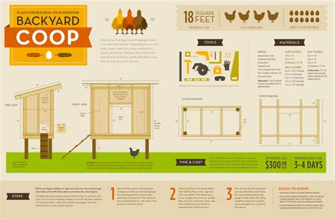 backyard chicken coop plans free diy projects chicken coop tutorial infographic the snug