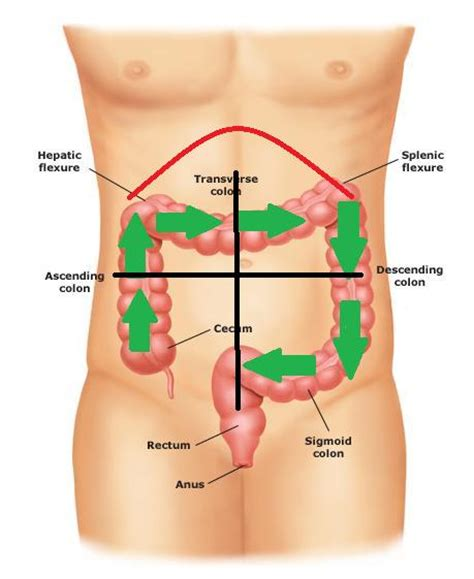 extreme constipation after c section natural remedy for constipation and gas pain without
