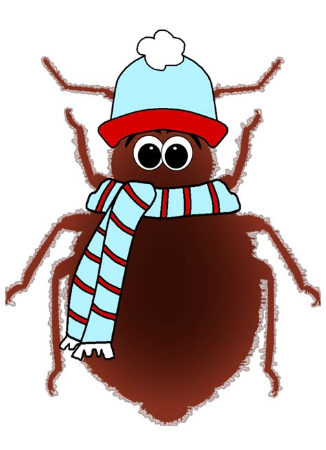freezing bed bugs does freezing kill bed bugs find out now what recent studies reveal