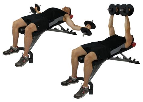 flat bench dumbell flys fit for life dumbbell flys