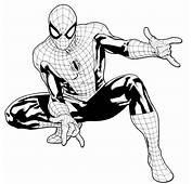Disegni Di Spiderman Da Stampare E Colorare Foto  Mamma