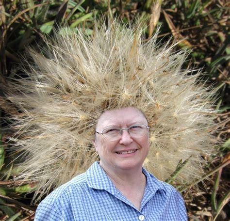 hairstyles bad hair days ivman s blague bad hair days