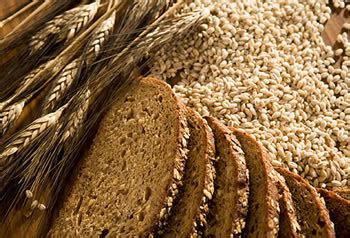 whole grains vs multigrain difference between multigrain whole grain and whole