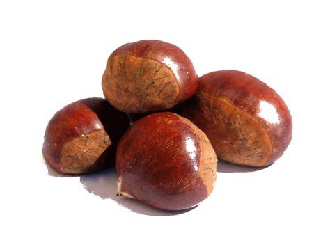 Almond Roasted 1 Kg By Genki Plant chestnut hybrids inra aromas e boletos