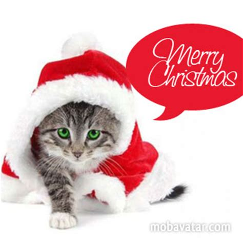 images of merry christmas kittens mobavatar com christian merry christmas cat version 1