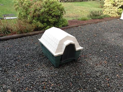 dogs rough housing ruff hauz by dogloo inc dog house with door outside comox