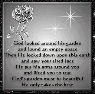 god looked   garden    empty space