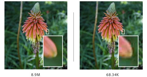 Image Compression In Photoshop image compression in photoshop