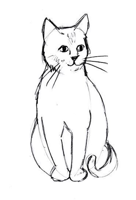 drawing doodle cat 1 best 25 easy cat drawing ideas on kawaii cat