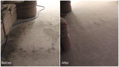 Rug Cleaning Denver by Carpet Cleaning Denver Carpet Cleaners Service Denver