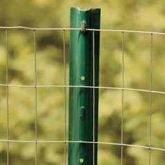 hedge   established simple  stake