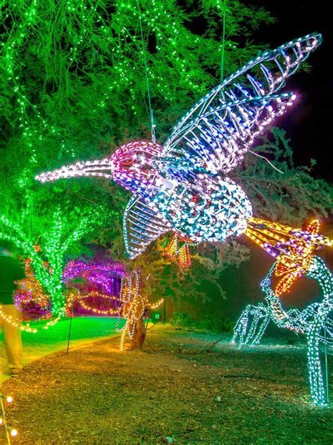 Zoolights At Phoenix Zoo Is Brighter Than Ever Zoo Lights Phx Az