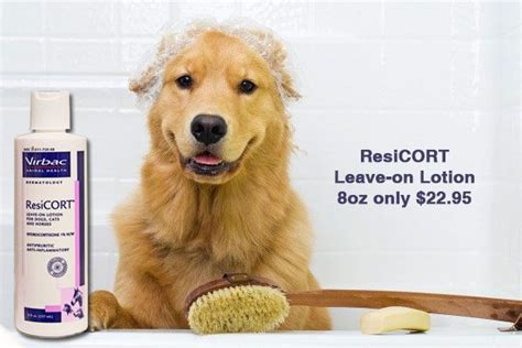 omeprazole dose for dogs 146 best images about great products on dogs with diabetes frontline for