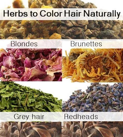 color, highlight & lighten hair naturally with herbs