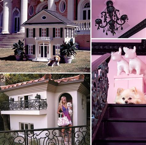 paris hilton dogs house top 5 luxuries nyc dogs cannot live without
