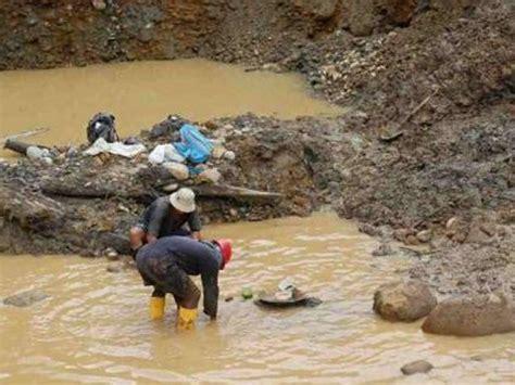 fiebre por el oro como sumarte esta tendencia decorativa per 250 fiebre oro provoca desborde de la miner 237 a ilegal
