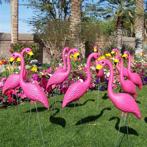 pink flamingos in the front yard 4 premium yard flamingos pink plastic flamingos and