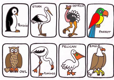 imagenes animales ingles imagenes de animales en ingles