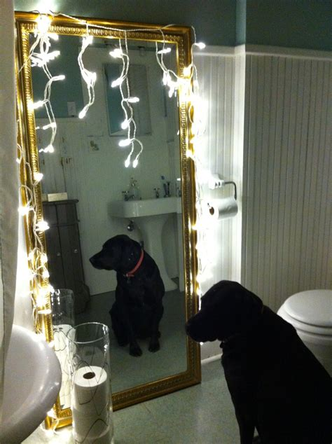 Bathroom Lights Keep Turning Pin By Emily Boyle On New Years