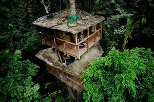 Pictures Of A Treehouse - 17 of the most amazing treehouses from around the world bored panda