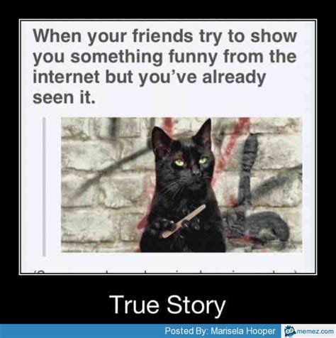Funny Pics Of Memes - your friends try to show you something funny memes com