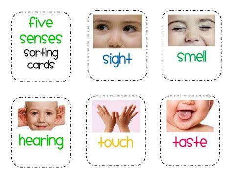 five senses sorting printables 1 171 funnycrafts