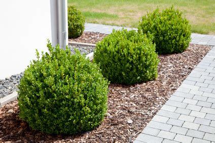 Garten Landschaftsbau Arbeitszeiten by Ausbildung Garten Und Landschaftsbauer Gartenbau