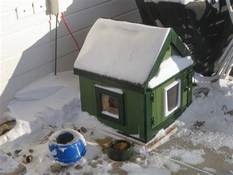 Insulated Cat House by Heated Stray Cat House Or Cat Houses
